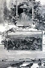 California Wine Vineyards 1888 GRAPES HOPS St. Helena St. Raphael Antique Print
