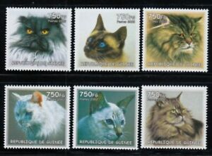 GUINEA Domestic Cats MNH set
