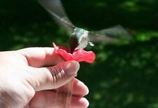 Humfi Hummingbird Feeder - Feed the Birds from Your Own Hand - Set of 2