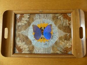 Vintage Wooden Tray decorated with Butterfly Wings - probably from Brazil