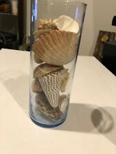 9� Tall Round Vase W/ Various Seashells