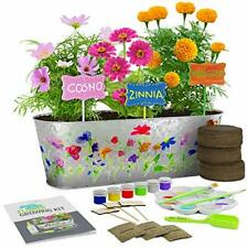 Dan&Darci Paint & Plant Flower Growing Kit - Grow Cosmos, Zinnia,