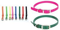 Single Ply Nylon Dog Collars - 3/8 in Wide - 10 to 14 in - all colors & sizes