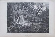 Baisch: Deutscher Urwald - Originaldruck aus ca 1880 Reproduktion print