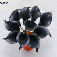 100 stücke Calla Samen Seltene Blumensamen Bonsai Topfpflanze MESA
