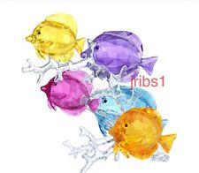 "Swarovski ""SIGNED"" RAINBOW FISH FAMILY 5223195 CRYSTAL FIGURINE SEA LIFE"
