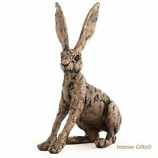 TED BRONZE HARE Frith Cold Cast Sculpture Thomas Meadows TM011 Hare Alarmed GIFT