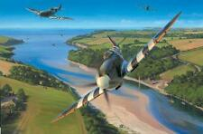 Nic Trudgian Spitfire print Back From Normandy signed by 3 pilots inc P Brothers