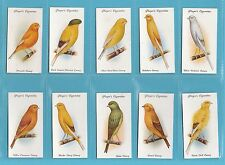 BIRDS  -  PLAYERS  -  SET  OF  50  AVIARY  &  CAGE  BIRDS  CARDS  - 1933