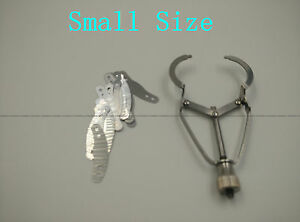 Small Dental Matrix Bands Formation Piece Stainless Steel Tofflemire Stuck 20pcs