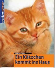 Ein Kätzchen kommt ins Haus von Hannelore Grimm - Kosmos Ratgeber Neu ungelesen