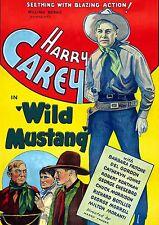 Wild Mustang (1935) (DVD) Harry Carey, Barbara Fritchie, & Del Gordon