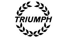 Triumph Classic & Vintage Car Paint Cellulose Codes & Colours ASOL