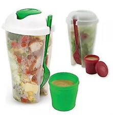 2 PACK Fresh Salad To Go Container Set with Fork and Dressing Holder (RED COLOR)
