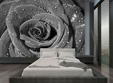 One Black Rose With Water Drops Wall Mural Photo Wallpaper GIANT WALL DECOR