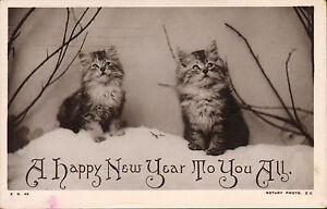 a happy new year to you all ! rotary photo card showing cats !1908