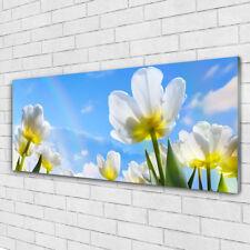 Impression sur verre Image tableaux 125x50 Floral Fleurs