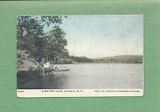 ELECTRIC LAKE In ONEONTA, NY On Vintage Unused 110-Year Old Postcard