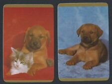 #915.308 Blank Back Swap Card -MINT pair- Puppy on blue & red background