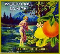 Woodland Nymph Orange Citrus Crate Label Art Print Vintage Tulare County CA