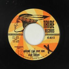 Northern Soul 45 - Jean Knight - Anyone Can Love Him - Tribe - mp3