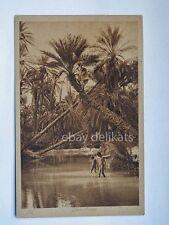 LIBIA Bengasi oasi colonie coloniali AOI vecchia cartolina