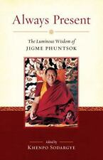 Always Present: The Luminous Wisdom of Jigme Phuntsok-ExLibrary