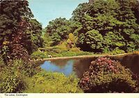 BR83101 the lakes cockington   uk