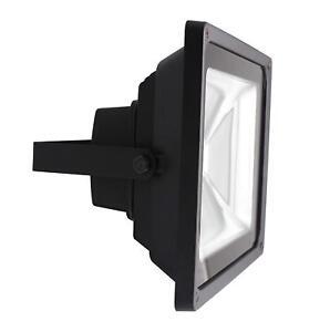 LDFL50W-01 50W LED Guardian Floodlight 2800K IP65
