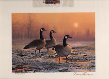 Oregon #5 1988 State Duck Stamp Print Canada Geese by Darrell Davis