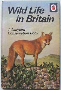 Vintage Ladybird Book – Wild Life in Britain –727– First Edition-Very Good/Fine