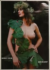 Hows Your Rhubarb 18x23 70's Pin Up Girl Poster Topless 1977