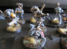 Warhammer 40000 Space Wolves Guard Grey Hunter pack D painted