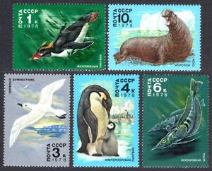 Russia 4679-4683, MNH.Antarctic Fauna. Petrel, Penguin, Pikes, Sea elephant,1978