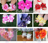 Newborn Baby Cute Flower Infant Girl feet Toddler Barefoot Blooms Sandals Shoes