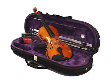 New Student 4/4 Solid Wood/Ebony Violin+Bow+820PL Case+Rosin+Extra String Set