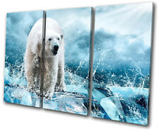 Animals Polar Bear TREBLE DOEK WALL ART foto afdrukken