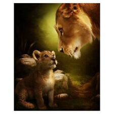 DIY Oil Painting Paint by Numbers Kits for Adults Kids Beginner Lions 16 X6E4