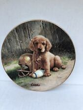 WIDE RETRIEVER PLATE COLLECTION FROM THE GOOD SPORTS BY Jim Lamb 1989