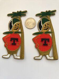 2 FTU Florida Technical University CITRONAUT Vintage Embroidered Iron On Patches