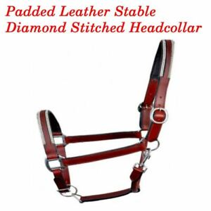 Soft Padded Leather Headcollar with Diamond�Fully Adjustable Full Cob Pony Brown