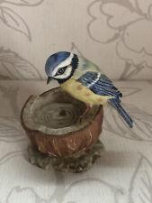 Vintage Chancery Collection Maruri Porzellan Blau Tit Garten Vogel Sammlerstück