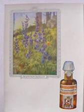 9917 AK homöopathische Heilmittel Reklame Dr. Madaus