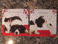 COLLIE KITTEN KING CHARLES GUINEA PIG LUXURY XMAS CARDS PK 10 GC 41
