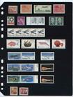 ANCHOR 10 Stock Pages 8S (8- rows) Sheets - Black sheets -- FREE SHIPPING.