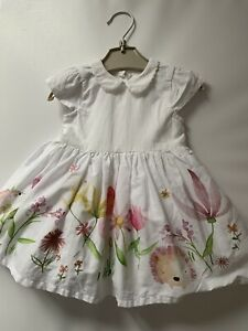 Newborn Occasion White/floral Print Dress With Collar. Next.