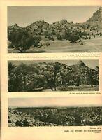 Publicité ancienne dans les régions du sud-marocain 1937 issue de magazine