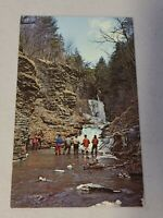 Vintage Postcard - Waterfall Scene - Fishing In The Finger Lakes Unposted #809