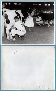 Lot of 10 Nellie Fox Chicago White Sox Original Press Wirephotos - Lot #1