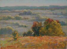 Original Far Horizonts of Ukraine Landscape Oil Artwork Impressionism ART
